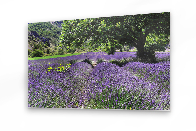 FineArtPrints Murals Provence South France