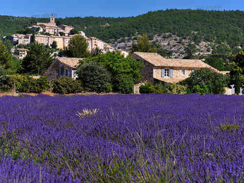 Banon, village of the Provence
