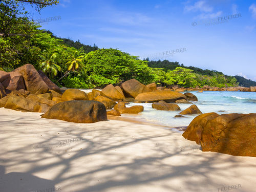 On the Seychelles