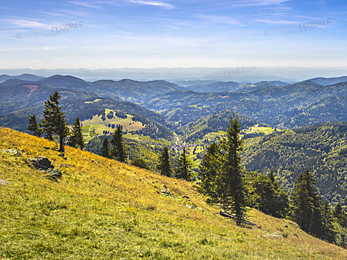 Panorama on the Belchen