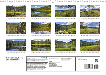 Innerview Black Forest lakes and raised bogs 2021